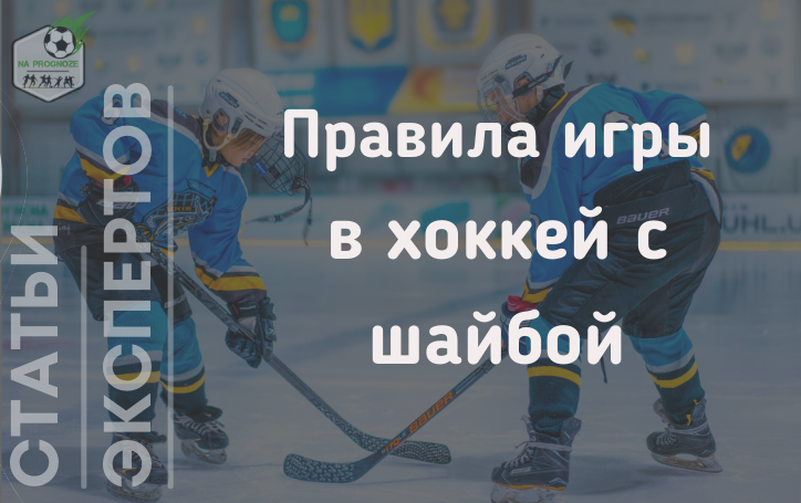 правила игры в хоккей с шайбой